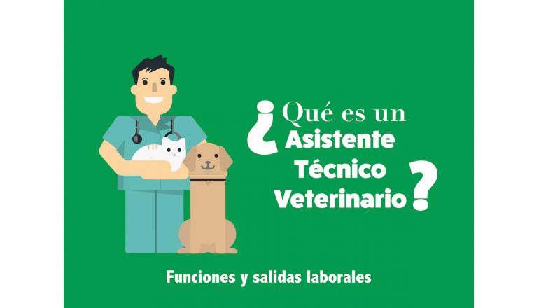 Qué es un Auxiliar de Veterinaria?